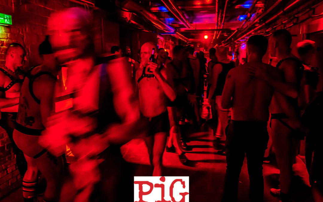 PiG Berlin Gallery – September 2018